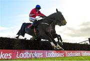 10 October 2021; Ontheropes, with Sean O'Keeffe up, jumps the last on their way to winning the JT McNamara Ladbrokes Munster National Handicap Steeplechase at Limerick Racecourse in Patrickswell, Limerick. Photo by Seb Daly/Sportsfile