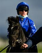 10 October 2021; Templehill Tamara, with Dylan O'Connor, aged 12, up, go to post before the Curragh Irish Pony Racing Association Derby at The Curragh Racecourse in Kildare. Photo by Harry Murphy/Sportsfile