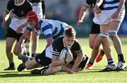 22 October 2021; Jack Dennis of Newbridge College during the Bank of Ireland Leinster Schools Junior Cup Final match between Blackrock College and Newbridge College at Energia Park in Dublin. Photo by Piaras Ó Mídheach/Sportsfile