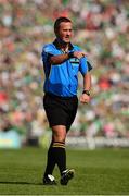 14 July 2013; Referee James McGrath. Munster GAA Hurling Senior Championship Final, Limerick v Cork, Gaelic Grounds, Limerick. Picture credit: Ray McManus / SPORTSFILE