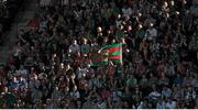 22 September 2013; Mayo supporters in the Davin Stand during the GAA Football All-Ireland Championship Final, Croke Park, Dublin. Picture credit: Dáire Brennan / SPORTSFILE
