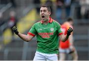 24 November 2013; Frankie Dolan, St Brigid's, celebrates after scoring a late point in normal time. AIB Connacht Senior Club Football Championship Final, St Brigid's, Roscommon, v Castlebar Mitchels, Mayo. Dr. Hyde Park, Roscommon. Picture credit: David Maher / SPORTSFILE