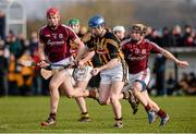 26 January 2014; Tomás Keogh, Kilkenny, in action against Padraig Landers, Galway. Bord Na Mona Walsh Cup, Semi-Final, Kilkenny v Galway, St. Lachtain's GAA Club, Freshford, Co. Kilkenny. Picture credit: Ray McManus / SPORTSFILE