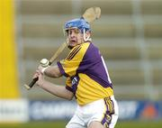 26 February 2006; Michael Jordan, Wexford. Allianz National Hurling League, Division 1A, Round 2, Wexford v Clare, Wexford Park, Wexford. Picture credit: Matt Browne / SPORTSFILE