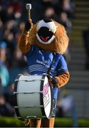 10 May 2014; Leo the Lion. Celtic League 2013/14, Round 22, Leinster v Edinburgh, RDS, Ballsbridge, Dublin. Picture credit: Brendan Moran / SPORTSFILE