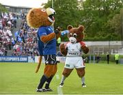 17 May 2014; Leinster mascot Leo the Lion and the Ulster mascot Sparky enjoy the atmosphere before the game. Celtic League 2013/14 Play-off, Leinster v Ulster, RDS, Ballsbridge, Dublin. Picture credit: Brendan Moran / SPORTSFILE