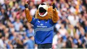 17 May 2014; Leinster mascot Leo The Lion. Celtic League 2013/14 Play-off, Leinster v Ulster. RDS, Ballsbridge, Dublin. Picture credit: Stephen McCarthy / SPORTSFILE