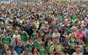 22 July 2014; Limerick supporters on the pitch after the game. Electric Ireland Munster GAA Hurling Minor Championship Final Replay, Waterford v Limerick, Semple Stadium, Thurles, Co. Tipperary. Picture credit: Diarmuid Greene / SPORTSFILE