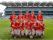 17 August 2014; The Cork team, back row, left to right, Matthew McCabe, St Malachy's Primary School, Down, Yanick Scheerer, Gaelscoil na Cruaiche, Mayo, Daniel Creegan, Killasonna National School, Longford, Cian Farrelly, St Michael's National School, Cavan, Cathal Wilson, Bishop Galvin National School, Cork, front row, left to right, John Toomey, Sacred Heart National School, Wicklow, James O'Leary, Glenville National School, Cork, Ferran O'Sullivan-Clavo, St Corbans Boys National School, Kildare, Ruairi McCann, St John's Primary School, Armagh, Mikey Duignan, Baltydaniel National School, Cork. INTO/RESPECT Exhibition GoGames, Croke Park, Dublin. Picture credit: Dáire Brennan / SPORTSFILE