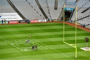 29 August 2014; Croke Park Stadium is prepared ahead of the Croke Park Classic, Penn State v University of Central Florida on Saturday. Croke Park, Dublin. Picture credit: Brendan Moran / SPORTSFILE
