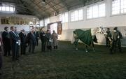 20 November 2006; John O'Donoghue, T.D., Minister for Arts, Sport and Tourism, following consultation with his colleague Mary Coughlan, T.D., Minister for Agriculture and Food, today (20 November 2006) announced the establishment of a new Agency – Horse Sport Ireland – which will be responsible for devising and implementing strategies for the development and promotion of an internationally competitive Irish sport horse industry (breeding, sport and leisure sides). He has designated Joe Walsh, T.D., as the Chairman of the new Agency. Pictured at the launch are Board Members of Horse Sport Ireland. McKee Barracks, Blackhorse Ave, Dublin. Picture credit: Brendan Moran / SPORTSFILE