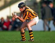 DJ Carey of Kilkenny. Photo by Ray McManus/Sportsfile