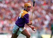 Eamonn Scallan of Wexford. Photo by Ray McManus/Sportsfile