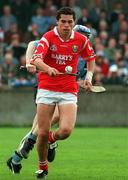 Sean Og O'hAilpin of Cork. Photo by Damien Eagers/Sportsfile