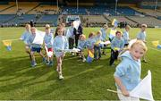 13 September 2014; The flagbearers before the game. Bord Gáis Energy GAA Hurling Under 21 All-Ireland 'B' Championship Final, Roscommon v Kildare. Semple Stadium, Thurles, Co. Tipperary. Picture credit: Ray McManus / SPORTSFILE