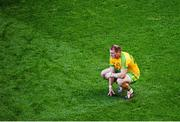 21 September 2014; A dejected Dermot Molloy, Donegal, after the game. GAA Football All Ireland Senior Championship Final, Kerry v Donegal. Croke Park, Dublin. Picture credit: Dáire Brennan / SPORTSFILE