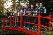 25 October 2014; The AIB Leinster GAA Club Championship was launched today, hosted by Irish National Stud and Gardens. Pictured at the launch are club captains, from left, Brendan Murphy, Rathvilly, Co. Carlow, Dessie Brennan, Eadestown GAA, Joe McCormack, Emmet Og Killoe, Co. Longford, Kenneth Garry, vice-captain, Rhode, Co. Offaly, Niall McKeigue, Navan O'Mahony's, Co. Meath, Cahir Healy, Portlaoise, Co. Laois, Conor Jordan, Raharney, Co. Westmeath, Alan Delaney, Rathdowney Erril, Co. Laois, Dan Currams, Kilcormac/Killoughey, Co. Offaly and John Doran, St. Mullins, Co. Carlow. Irish National Stud and Japanese Gardens, Tully, Co. Kildare. Picture credit: Pat Murphy / SPORTSFILE