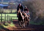 14 January 2000; Danoli, and head lad Noel Hamilton, during the morining training run on the gallops at the Tom Foley Aghabeg Yard in Bagenalstown, Carlow. Photo by Matt Browne/Sportsfile