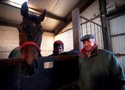 14 January 2000; Trainer Tom Foley and head lad Noel Hamilton, with Danoli, after the morining training run on the gallops at his Aghabeg Yard in Bagenalstown, Carlow. Photo by Matt Browne/Sportsfile