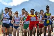 14 December 2014; Ireland's Fionnuala Britton, third from left, competes alongside, from left, France's Sophie Duarte, eventual race winner Great Britain's Gemma Steel, Spain's Trihas Gebre, Poland's Iwona Lewandowski and Sweden's Meraf Bahta, during the Women's race. Spar European Cross Country Championships, Samokov, Bulgaria. Picture credit: Ramsey Cardy / SPORTSFILE