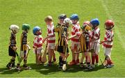 23 January 2015; Exhibition image from Sportsfile at the Professional Photographers Association of Ireland - Photographer of the Year Awards 2015. Ray McManus - Finalist in Sports Feature  14 July 2014; Players from the Ferns GAA Club, Co. Wexford, wearing red and white shirts, including three year old Paudie Moynihan, third from left, shake hands with the Camross GAA Club, Co. Laois, players after their game. Camross GAA Club, Laois, v Ferns GAA Club, Wexford, Leinster GAA Croke Park Go Games 2014, Croke Park, Dublin. Picture credit: Ray McManus / SPORTSFILE