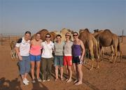 28 January 2008; Members of the Ladies All Stars team with camels during a Safari trip, from left, Angela Walsh, Cork, Brid Stack, Cork, Caoimhe Marley, Armagh, Briege Corkery, Cork, Nollaig Cleary, Cork and Rena Buckley, Cork. O'Neills/TG4 Ladies Gaelic Football All Star Tour 2007, Dubai, United Arab Emirates. Picture credit: Brendan Moran / SPORTSFILE  *** Local Caption ***