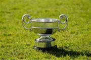 31 March 2015; A general view of the Croke Cup on the Semple Stadium pitch ahead of the Masita GAA All-Ireland Post Primary Schools Croke Cup Final which will take place between Thurles CBS, Tipperary, and St. Kieran's College, Kilkenny, in Semple Stadium, Thurles, at 5pm on Saturday. Semple Stadium, Thurles, Co. Tipperary. Picture credit: Diarmuid Greene / SPORTSFILE