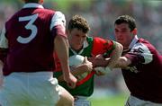 David Nestor Mayo Football, ( V Galway, Tuam, 25/5/97). Photograph Ray McManus SPORTSFILE.