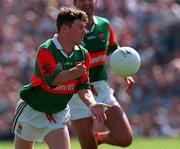 David Nestor Mayo Football, ( V Galway Tuam, 25/5/97).  Photograph Ray McManus SPORTSFILE.