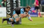 25 April 2015; Adam Ashe, Glasgow Warriors, goes over for his sides fourth and bonus point try. Guinness PRO12, Round 20, Connacht v Glasgow Warriors. Sportsground, Galway. Picture credit: Oliver McVeigh / SPORTSFILE