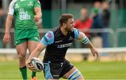 25 April 2015; Adam Ashe, Glasgow Warriors, celebrates after scoring his sides fourth and bonus point try. Guinness PRO12, Round 20, Connacht v Glasgow Warriors. Sportsground, Galway. Picture credit: Oliver McVeigh / SPORTSFILE