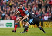 30 May 2015; Billy Holland, Munster, is tackled by Douglas Hall, Glasgow Warriors. Guinness PRO12 Final, Munster v Glasgow Warriors. Kingspan Stadium, Ravenhill Park, Belfast. Picture credit: Paul Mohan / SPORTSFILE
