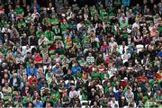 7 June 2015; Supporters watch on during the first half. Three International Friendly, Republic of Ireland v England. Aviva Stadium, Lansdowne Road, Dublin. Picture credit: Ramsey Cardy / SPORTSFILE