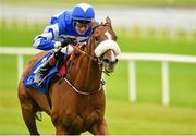 23 August 2015; Chillie Billie, with Ross Coakley up, finished second in the Luke & Nellie Comer Apprentice Handicap. Horse Racing from the Curragh. Curragh, Co. Kildare. Picture credit: Cody Glenn / SPORTSFILE