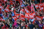 27 September 2015; Supporters at the game. TG4 Ladies Football All-Ireland Senior Championship Final, Croke Park, Dublin. Picture credit: Ramsey Cardy / SPORTSFILE