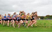 18 October 2015; The start of the Senior Women's race. Autumn Open Cross Country. Phoenix Park, Dublin. Picture credit: Tomás Greally / SPORTSFILE