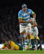 25 October 2015; Matias Alemanno, Argentina. 2015 Rugby World Cup, Semi-Final, Argentina v Australia. Twickenham Stadium, Twickenham, London, England. Picture credit: Ramsey Cardy / SPORTSFILE