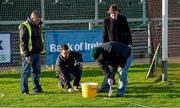 10 January 2016; Ground staff paint white lines around the goal mouth. Bank of Ireland Dr. McKenna Cup, Group B, Round 2, Down v Fermanagh, Páirc Esler, Newry, Co. Down. Picture credit: Mark Marlow / SPORTSFILE