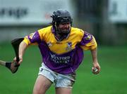 1 April 2001; Sean Flood, Wexford. Hurling. Picture credit; Aoife Rice / SPORTSFILE
