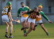 31 January 2010; P.J. Delaney, Kilkenny, in action against Ger Oakley and Daniel Currams, left, Offaly. Walsh Cup Quarter-Final, Offaly v Kilkenny, O'Connor Park, Tullamore, Co. Offaly. Picture credit: Brian Lawless / SPORTSFILE