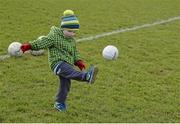 28 February 2016; Rían Sheridan, age 2 and a half, and son of former Longford goalkeeper Damien Sheridan, plays on the pitch before the game. Allianz Football League, Division 3, Round 3, Longford v Kildare, Glennon Brothers Pearse Park, Longford. Picture credit: Piaras Ó Mídheach / SPORTSFILE