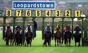 16 April 2001; Horses burst out of the stalls at the start of the Sugarloaf Maiden of £12,500, which was the first race on the first day back of Horse Racing in Ireland since Racing was suspended due to foot and mouth, at Leopardstown Racecourse in Dublin. Photo by Brendan Moran/Sportsfile