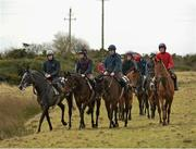 7 March 2016; Pictured are, from left, Guitar Pete, with David Mullins up, Lyreen Legend, with Byran Cooper up, Allhelletloose, with Rob Brennan up, and Sheamus, with Nathan Brennan up, at the Fairyhouse Boylesports Irish Grand National Launch. Osborne Lodge, The Curragh, County Kildare. Picture credit: David Maher / SPORTSFILE