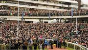 18 March 2016; A general view of the winners' enclosure, with jockey Bryan Cooper on Don Cossack, after the Timico Cheltenham Gold Cup. Prestbury Park, Cheltenham, Gloucestershire, England. Picture credit: Seb Daly / SPORTSFILE