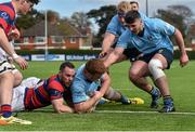 16 April 2016; Peadar Timmins, UCD, is congratulated by team-mates Sean McNulty and Jeremy Loughman after scoring his side's second try despite the efforts of Rob McGrath, Clontarf. Ulster Bank League Division 1A, Final Round, Clontarf v UCD. Castle Avenue, Clontarf, Dublin. Picture credit: Cody Glenn / SPORTSFILE