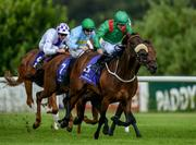 21 July 2016; Kadra, with Shane Foley up, leads the field on their way to winning the Racecourse Of The Year Handicap during the Bulmers Evening Meeting at Leopardstown in Dublin. Photo by Brendan Moran/Sportsfile