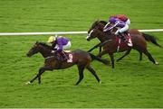 25 July 2016; Eventual winner Right Honourable, with Pat Smullen up, races ahead of Courage Under Fire, with Seamie Heffernan up, number 4, and Brutal, with Colin Keane up, on their way to winning the Claregalwayhotel.ie (C&G) European Breeders Fund Maiden at the Galway Races in Ballybrit, Co Galway. Photo by Cody Glenn/Sportsfile