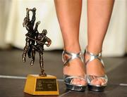 6 November 2010; A general view of the 2010 Camogie All-Star award at the 2010 Camogie All-Stars in association with O'Neills. Citywest Hotel, Saggart, Co. Dublin. Picture credit: Stephen McCarthy / SPORTSFILE