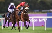 10 September 2016; Zhukova, with Pat Smullen up, on their way to winning the KPMG Enterprise Stakes at Leopardstown Racecourse in Dublin. Photo by Matt Browne/Sportsfile