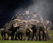 5 February 2011; The Blackrock College and Old Belvedere forwards prepare for a scrum. Ulster Bank All-Ireland League Division 1A, Old Belvedere v Blackrock College RFC, Anglesea Road, Ballsbridge, Dublin. Picture credit: Ray McManus / SPORTSFILE